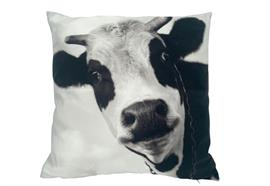Kissen mit Kuh Motiv  mit Reisverschluss  Grösse: 40cmx40cm  Digitaldruck einseitig