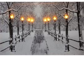 LED Bild aus Canvas 8 LED  Motiv: Verschneite Allee  B:40cm H:30cm T:1.8cm