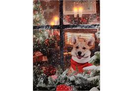 LED Bild aus Canvas Motive: Hunde am Fenster 4 LED